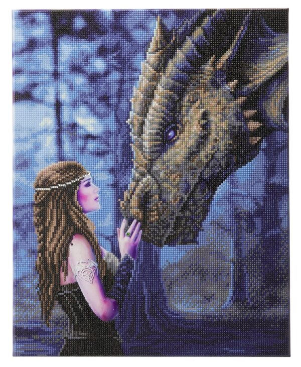 DIY Crystal Art Kits - Framed Canvas 40x50cm - Once Upon A Time by Anne Stokes 1