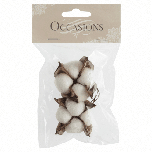 Occasions - Cotton Plant on Wire 1