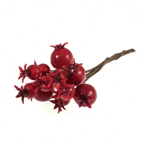 Occasions - Pomegranates on Wire - Red 2