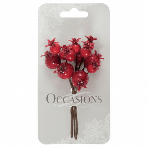 Occasions - Pomegranates on Wire - Red 1