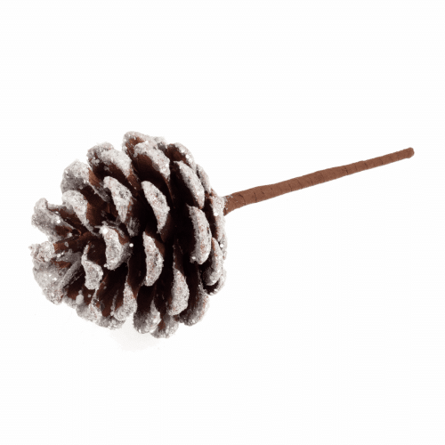Occasions - Snow Frosted Pinecone 1